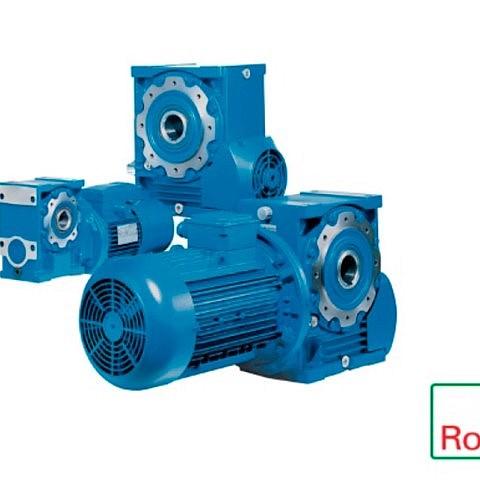 Rossi Worm Gear Motor